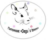 Питомник декоративных грызунов Degu`s town