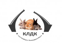 """КЛДК """"Петербургское Созвездие"""""""