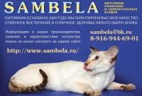Питомник Sambela