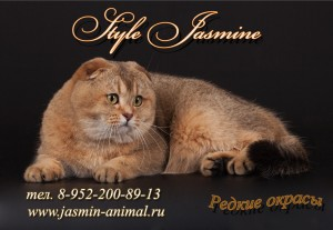 Питомник Style Jasmine