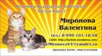 """Питомник """"Звезда Курил"""""""